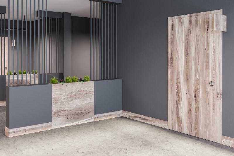 Современные и стильные межкомнатные двери в интерьере